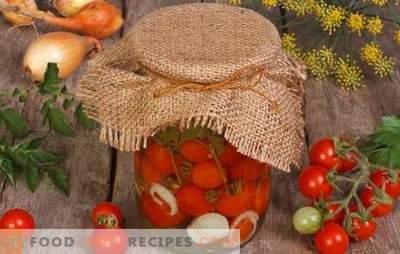 Pomodori in gelatina per l'inverno - deliziosa bellezza! Le ricette più facili e gustose per cucinare i pomodori in gelatina per l'inverno