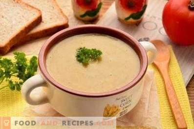 Zuppa di crema di funghi bianchi secchi