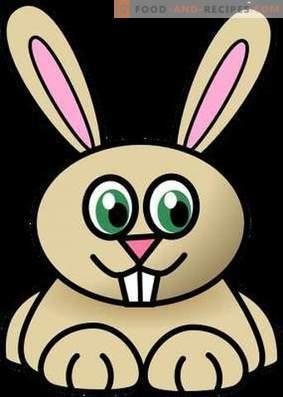 Carne di coniglio: beneficio e danno