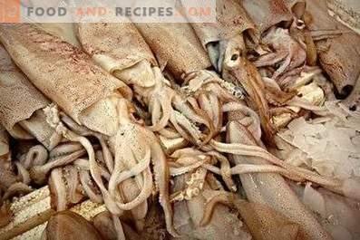 Come conservare i calamari