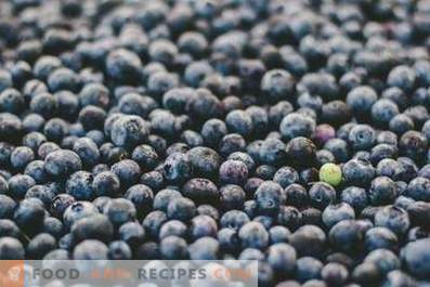 How to store blueberries