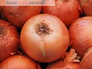 How to store onions at home