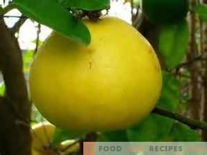 Come scegliere un pomelo