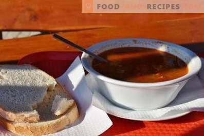 Sopa Kharcho