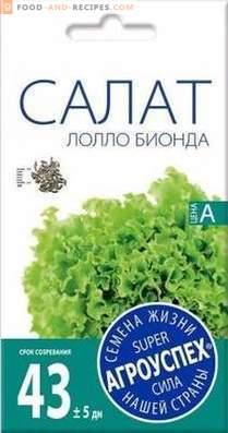 Varietà di lattuga da coltivare in primavera, estate e autunno