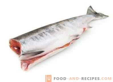 Salmone in umido: beneficio e danno